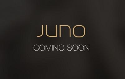 美国新打车应用Juno上线 欲挑战Uber