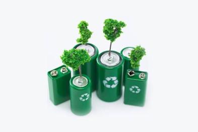 """树木制造,自行分解——终级零污染的""""植物电池""""来了!"""