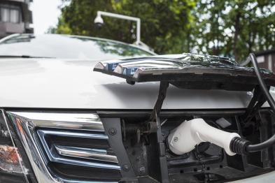 """新能源汽車""""山雨欲來"""",產業鏈存活率可能不超過10%"""