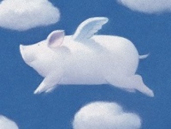 """Jeep高层谈""""成功学"""":风口的猪要学会飞才能起来"""