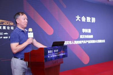 武汉市经信委李林清:汽车新四化是产业持续发展的根本性问题