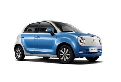 """""""电动小车""""欧拉R1上市,售价5.98万-7.78万元"""