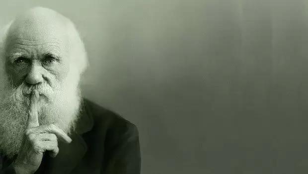 """达尔文:""""飞行汽车""""就是在跟我的理论作对~"""