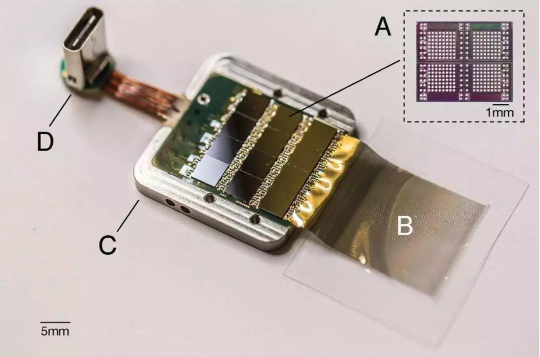 用于放大信号并将信号传输到计算机的芯片。