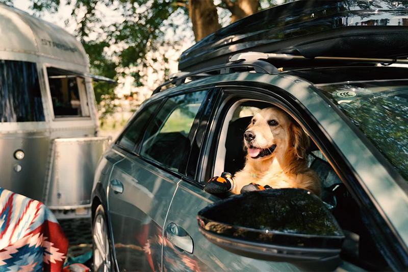 无露营不旅行,什么车与说走就走的户外旅行最配?