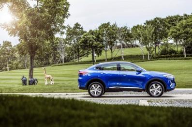 长城汽车:上半年累计销售近50万辆,同比增长4.7%