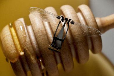 小蜜蜂机器人和自动驾驶汽车有什么关系?
