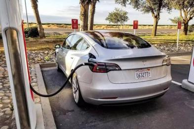 外媒:中国考虑恢复电动汽车生产许可
