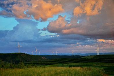 """能源互联网,在不经意间""""渐成气候"""""""