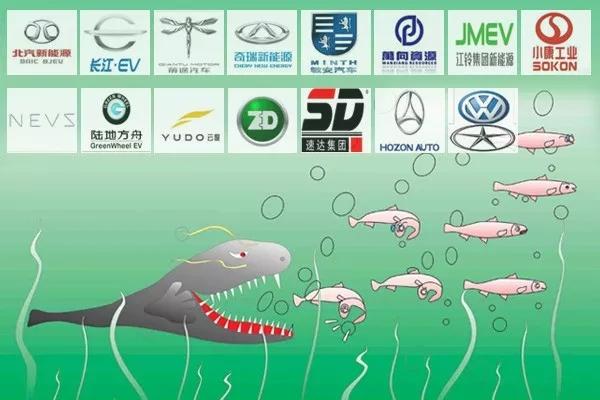 已有15个新建纯电动乘用车项目获批,部分鲶鱼效应已现